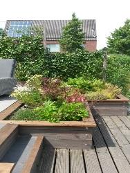 tuin-nieuwkoop-aan-de-sloot-foto-4