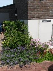 tuin-nieuwkoop-aan-de-sloot-foto-6