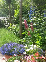 tuin-oegstgeest-foto-4