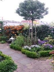 tuin-zoetermeer-najaar-foto-1